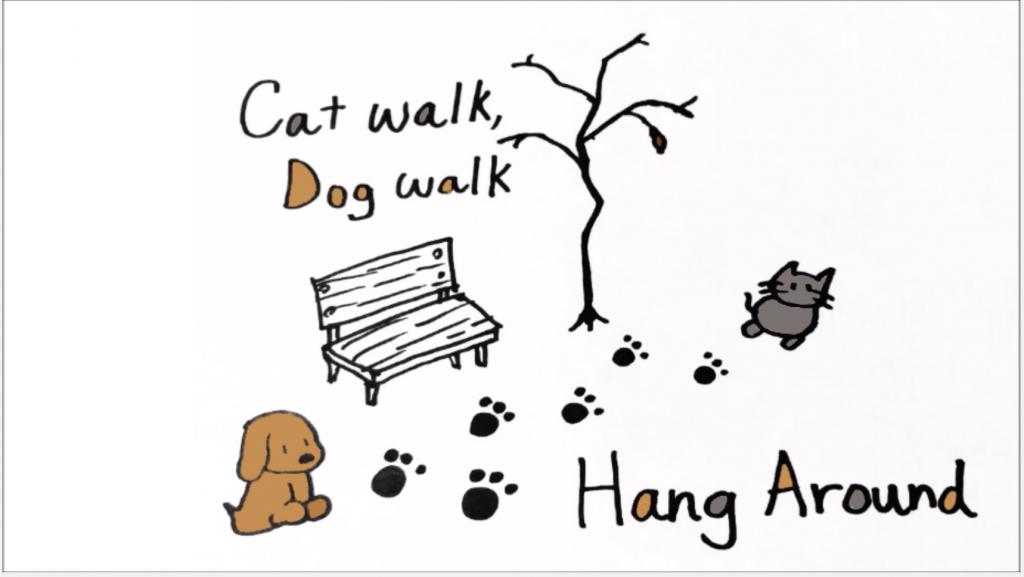 cat walk, dog walk