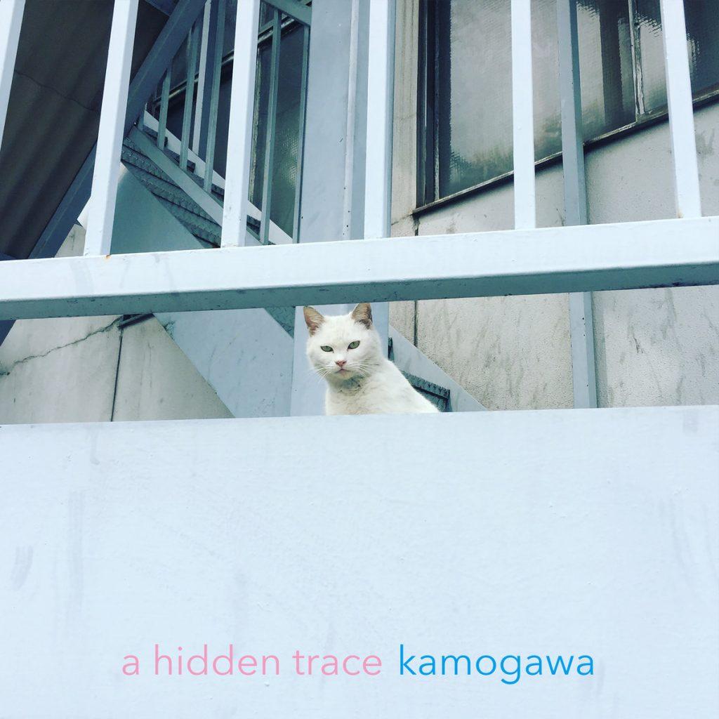 a hidden trace